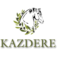 cropped-kazdere-logo.fw_.png